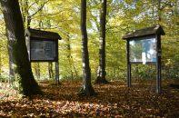 Sentier didactique du Bois de Bruyère
