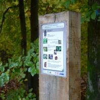 Arboretum du Bois de Bruyère